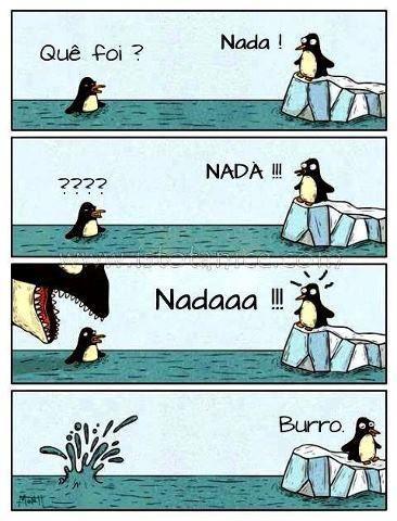 -- What's Up? - Swim! --???? - SWIM!! - Swimmm!!! - Donkey.