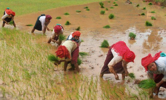 Birmanie - Kalaw Inle