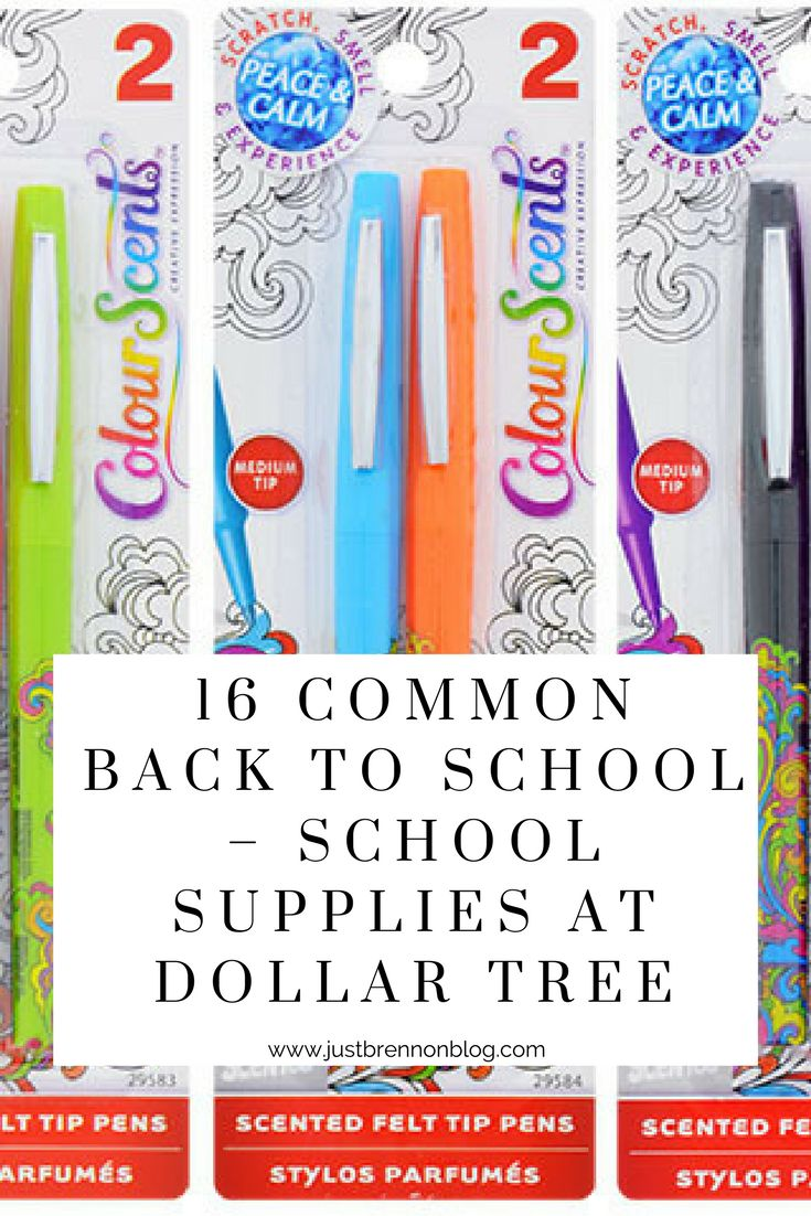 16 Common Back to School items to buy in bulk online at Dollar Tree for parents and teachers. (scheduled via http://www.tailwindapp.com?utm_source=pinterest&utm_medium=twpin&utm_content=post203184937&utm_campaign=scheduler_attribution)
