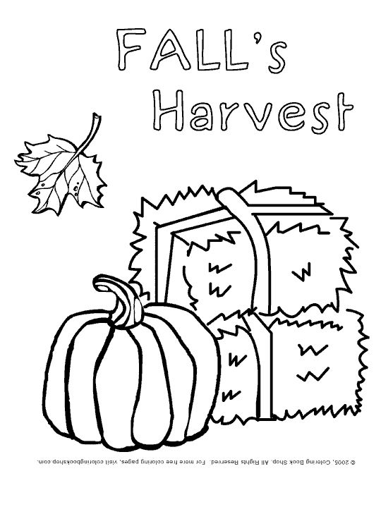 preschool leaves worksheets Thanksgiving printable