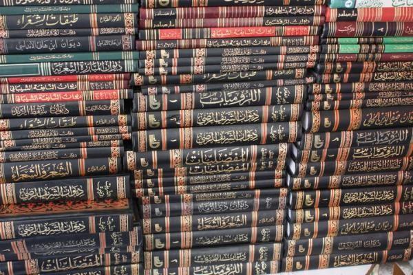 Intensive Arabic in Amman, Jordan (Summer)   AMIDEAST