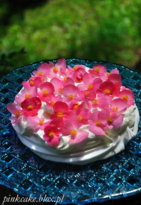 tort bezowy z begoniami