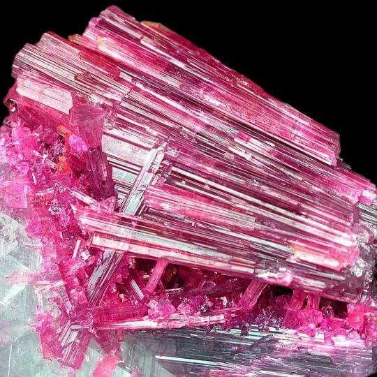 Tourmaline on Quartz from Cruzeiro Mine, Doce Valley, Minas Gerais, Brazil Credit: Wittig-Minerals Amazing Geologist