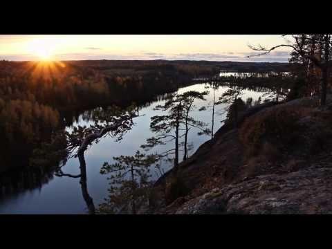 Metsän tarina, luontodokumentti 2012
