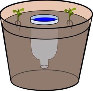 Homestead Survival: Plantador DIY Reservatório de água para as plantas em vasos  zona 1, a horta.