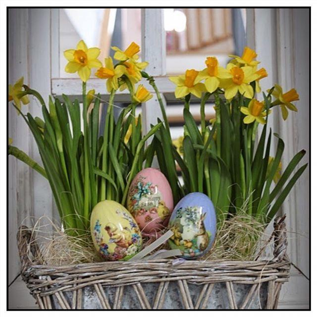 Mukavaa keskiviikkoa kaikille! Pääsiäinen rupeaa hiipimään meille  Happy Wednesday! Easter is coming to our house      #interior444 #interiorstyled #etuovisisustus #oikotiesisustus #roominteriorr #ninterior #interior123 #unike_hjem #maalaisromanttinenkoti #rivieramaisonlove #interiorandhome #interiorandliving #sisustus #inredning #pääsiäinentulee #pääsiäinen #easter #påsk #styleroom_fi #inspohome #inspiroivakoti #narsissit #narsisser #pääsiäisasetelma #easterdecor #easterdecorat...