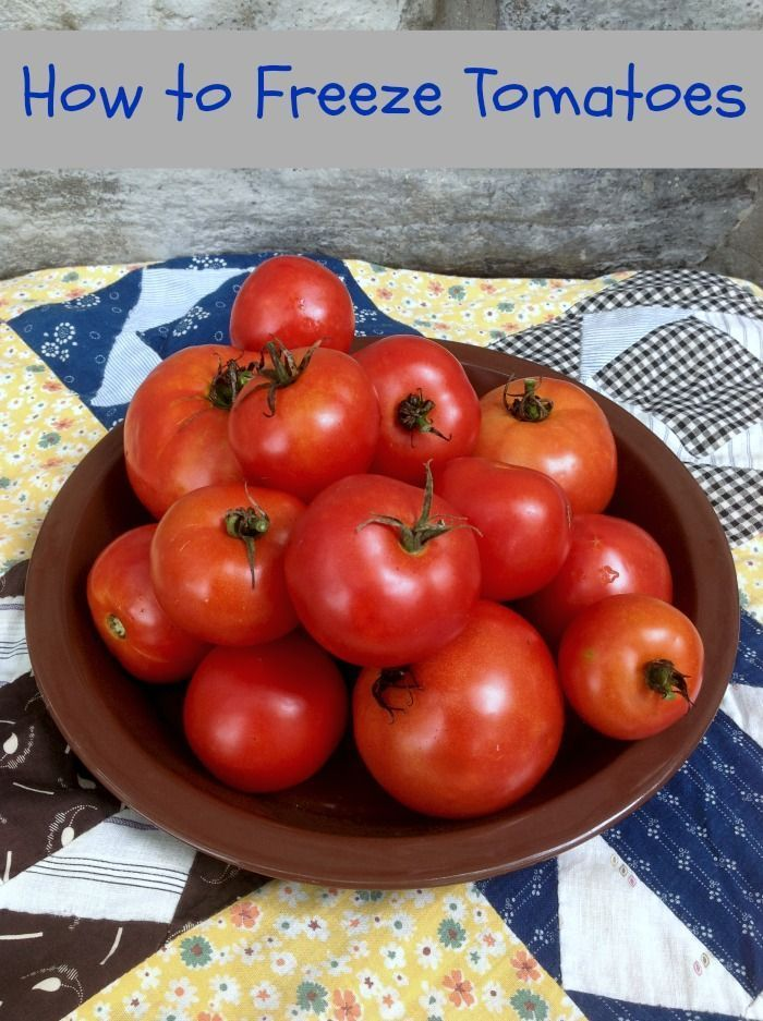 Do You Know How to Freeze Tomatoes | http://just2sisters.com/how-to-freeze-tomatoes/