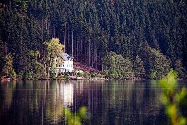 Titisee,  Black Forest,  Germany:                                                                                                                                                                                 More