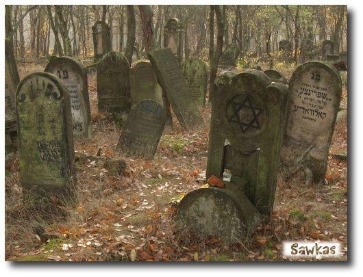 Cmentarz żydowski Karczew Anielin