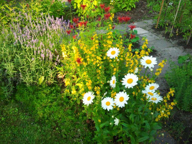 Zahrada v přírodním stylu, Kladno - Švermov