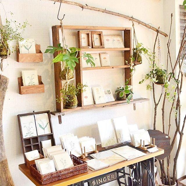 . 秋はキノコモチーフが人気のbotaniko pressさんのカードコーナーにて。現在、苔玉や植物を吊るす用に木の枝も販売しています。これからの季節、ストールなどを布物を掛けたり、タペストリーのように飾る棒としてもおすすめです #botanikopress #活版印刷 #キノコ #カード #吊し苔玉 #枝もの #インテリア #植物 #Kitowa #樹と環