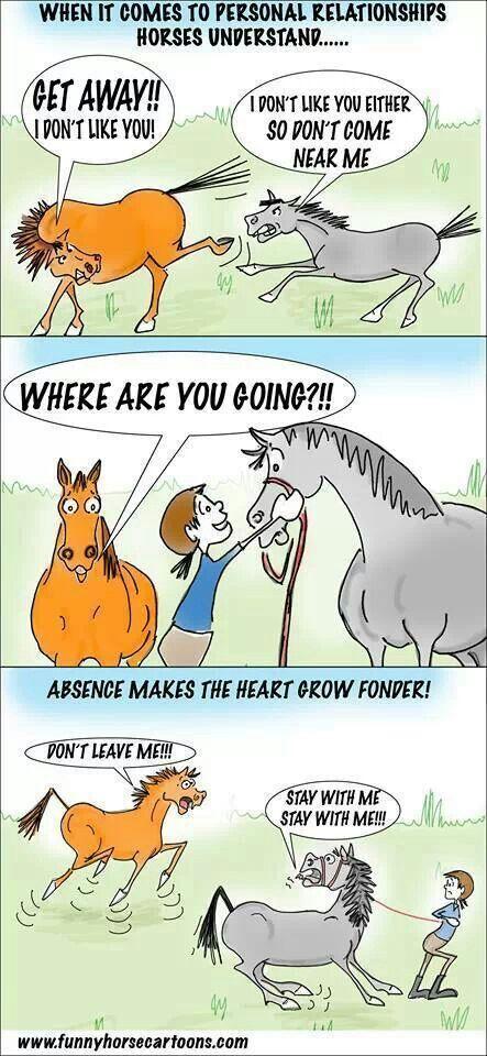 Yep that is all my horses!!!!!!!! :)
