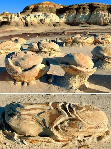 New Mexico's Bisti Egg Garden - photo by Gr8sublime, via WebEcoist;  The Bisti/De-Na-Zin Wilderness is a wilderness area located near Farmington, New Mexico.  The Bisti Egg Garden is an area of unusual rock formations containing a combination of different types of sedimentary rocks with varying hardness.