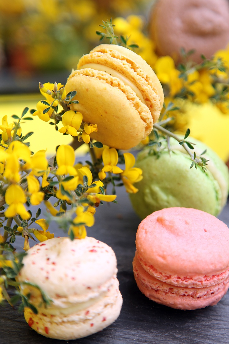 marguerites and macarons