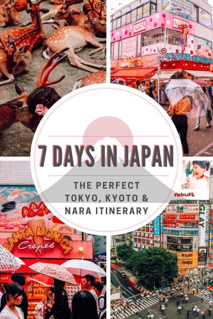 7 Day Japan Itinerary In 2020 Japan Itinerary Tokyo Travel Tokyo Japan Travel
