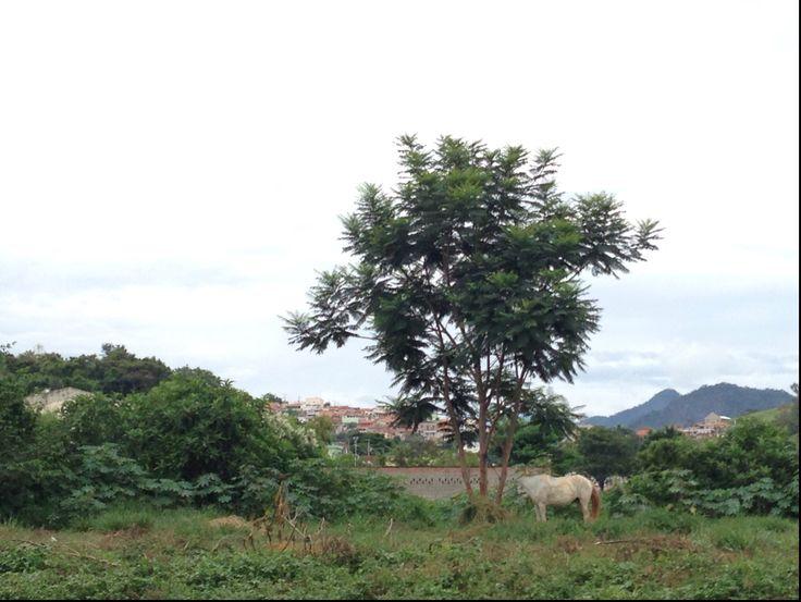 Itajubá in Minas Gerais