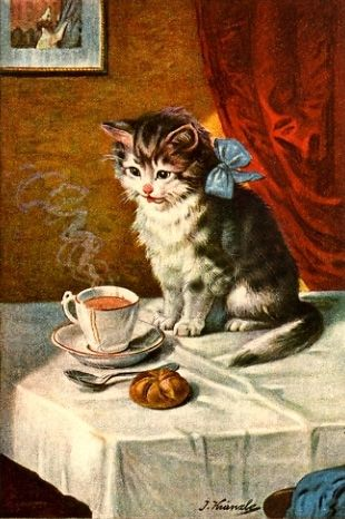Tea-loving kitten
