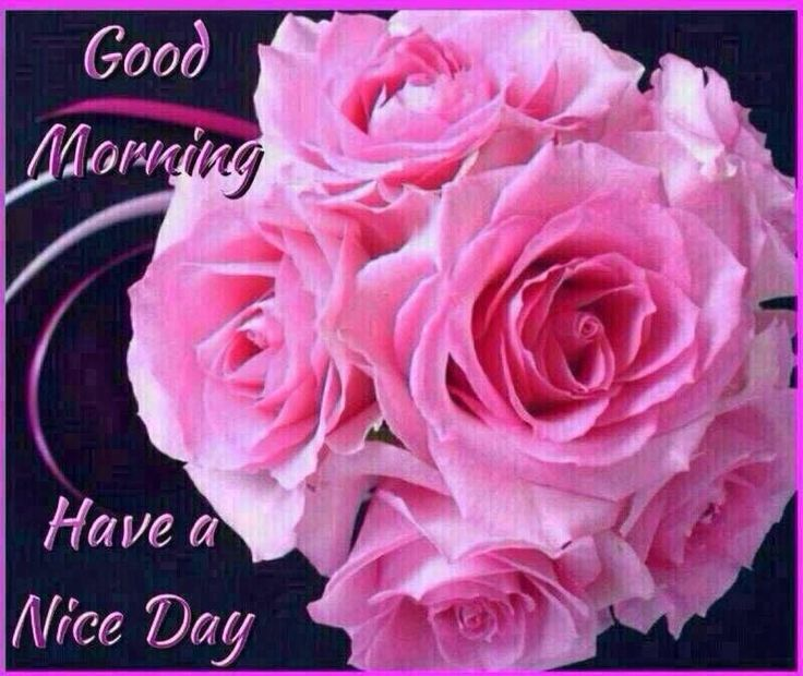 Good Morning, Have A Nice Day morning good morning morning quotes good morning quotes good morning greetings