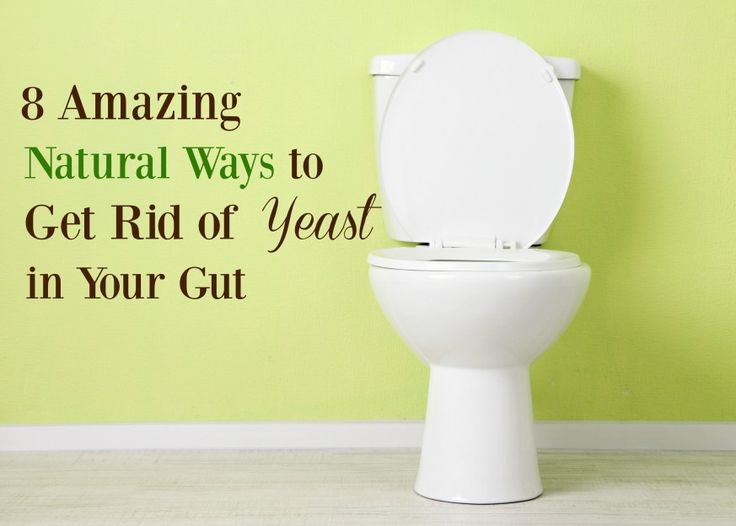 8 Amazing Natural Ways to Get Rid of Yeast in Your Gut and heal your body.