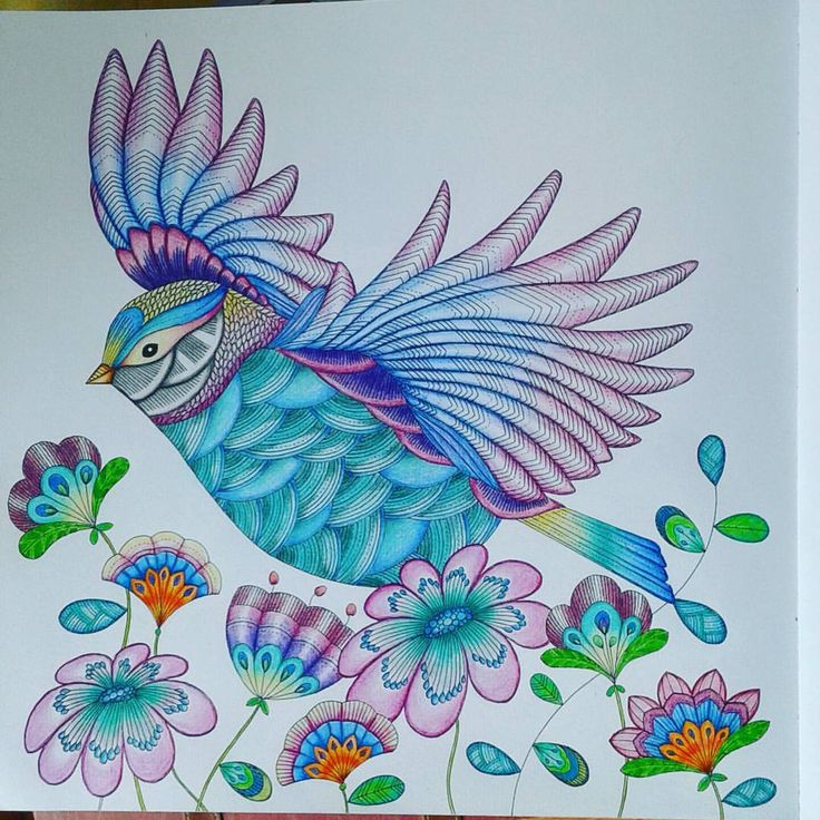Coloringbook Animalkingdom Milliemarotta Livrodecolorir Reinoanimal Yipi I Finished My Beautiful Bird Im Really Proud Of It