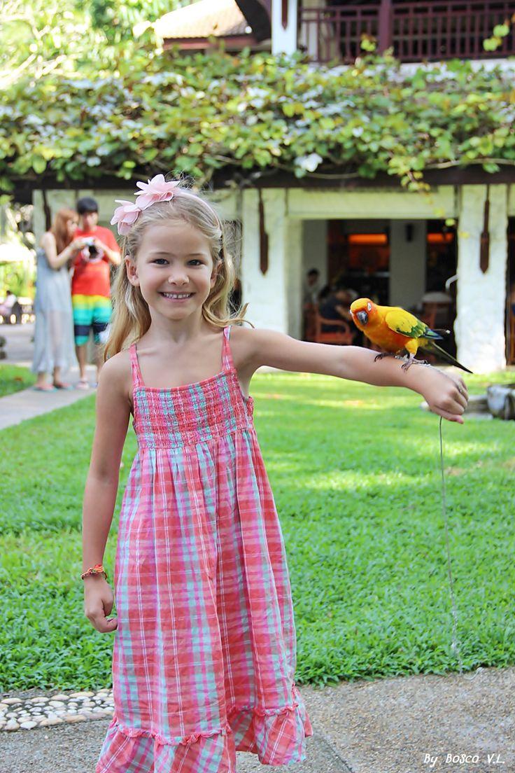 photos in the board were took from Thavorn Beach Village & Spa, Phuket, Thailand #kalim #kamala #patong #phuket #thailand #holiday #vacation #thavornbeachvillageandspa #parrot #childrenparadise