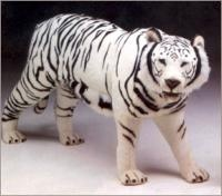 Tigers from Big Furry Friends - World's Largest Source of Luxury Handmade Animals  $4,375.00