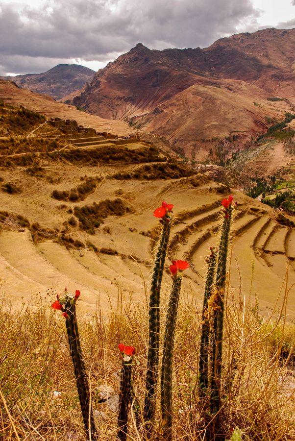 Cuzco Peru by Chris Taylor, via 500px