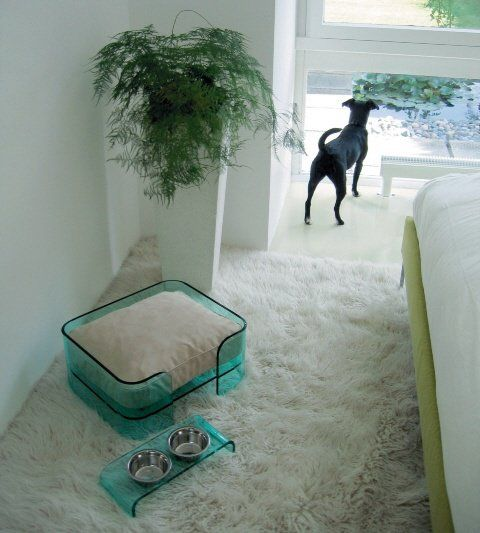 17 Best Images About Pet Friendly Flooring On Pinterest: 17 Best Ideas About Pet Beds On Pinterest