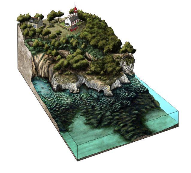 <p>Bloc diagramme des paysages sous marins des grottes du Diable</p> <cite>© Maxime Aubinet</cite>
