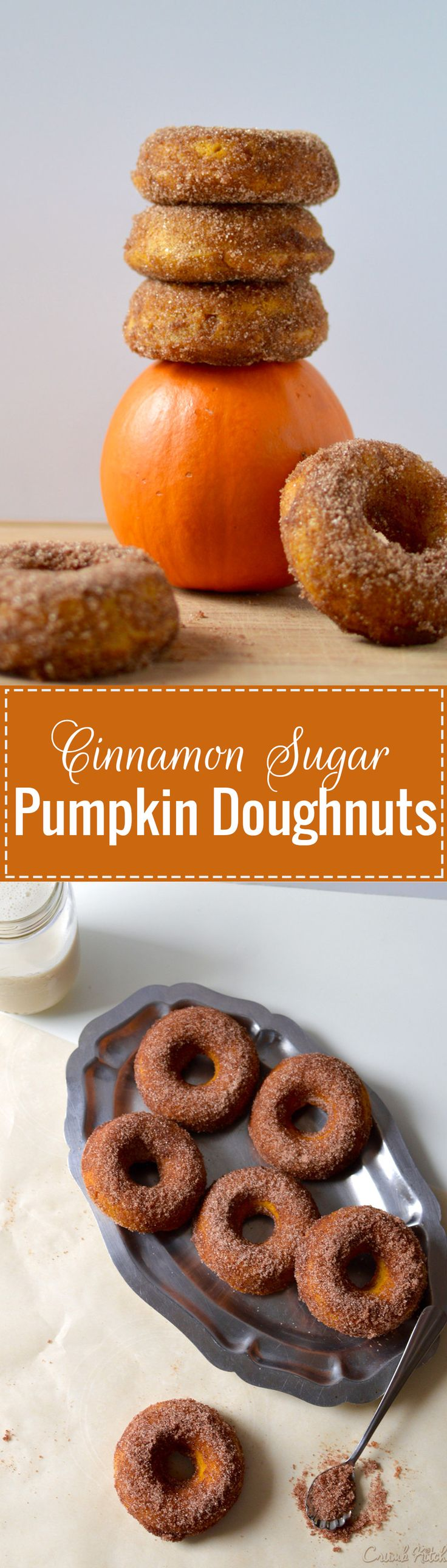A light sprinkle of cinnamon and sugar coat these soft and chewy baked pumpkin doughnuts for a perfect fall-themed dessert or brunch centrepiece. | crumbkitchen.com