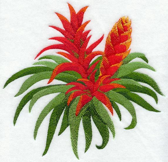 tropical patterns | ... Embroidery Designs at Embroidery Library! - Bromeliad Tropical Flower