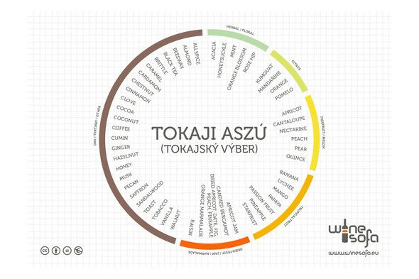 Tokaji Aszú flavor profile -  Discover a great preview of what 'Noble Rot' dessert wines can offer