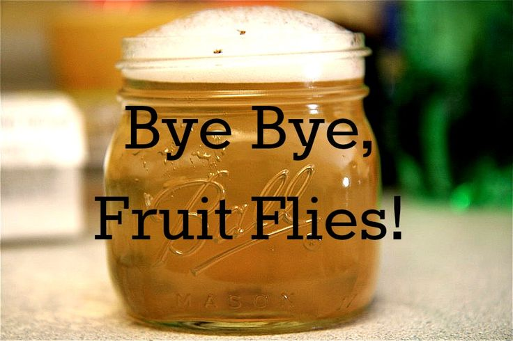 How to Get Rid of Fruit Flies  take a wide mouth jar and fill it 1/2 — 3/4 of the way full with apple cider vinegar. (No other vinegar will work, btw. It has to be apple cider vinegar.)  Add a few drops of dish soap, then fill the rest of the jar with water until the bubbles reach the rim of the jar.  Finally, in the words of my lovely friend…. WATCH THE CARNAGE.