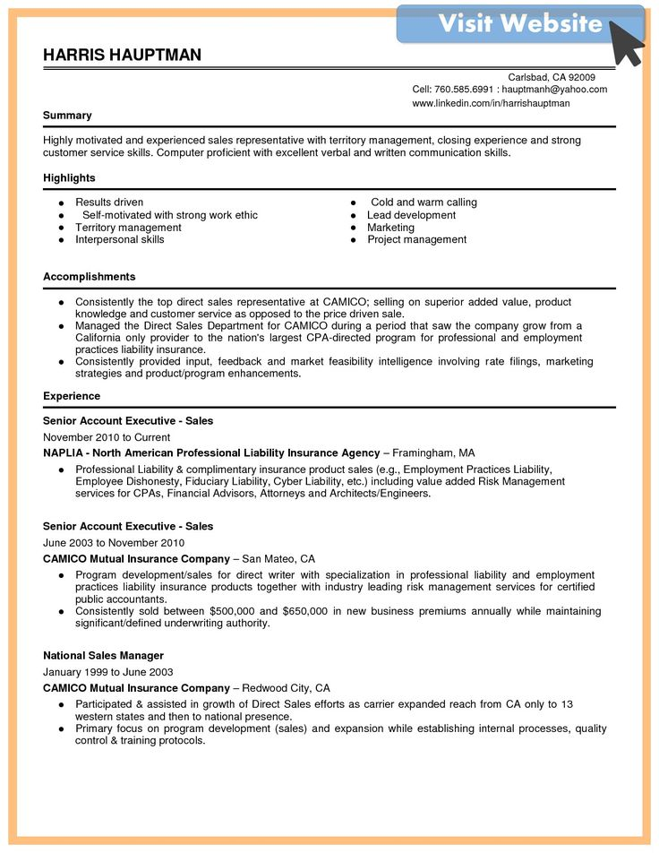 Customer Service Resume Summary Examples 2019 In 2020 Resume