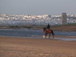conil playas cadiz - Buscar con Google