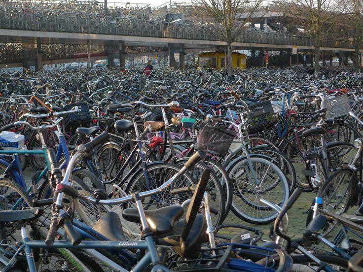 Amsterdam. This small European city has more bicycles than Beijing, China! They even had a bicycle garage at the train station to park their bikes.Training Stations, Cool Bikes, Amsterdam Bikes, Beijing China, Central Stations, Centraal Stations, Beautiful Places, The Cities, Amsterdam Centraal