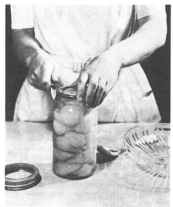 Vintage Canning Photos - circa 1950 - Thank God this is not how we can anymore
