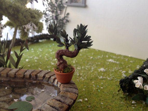 25 best ideas about olivier bonsai on pinterest olea. Black Bedroom Furniture Sets. Home Design Ideas