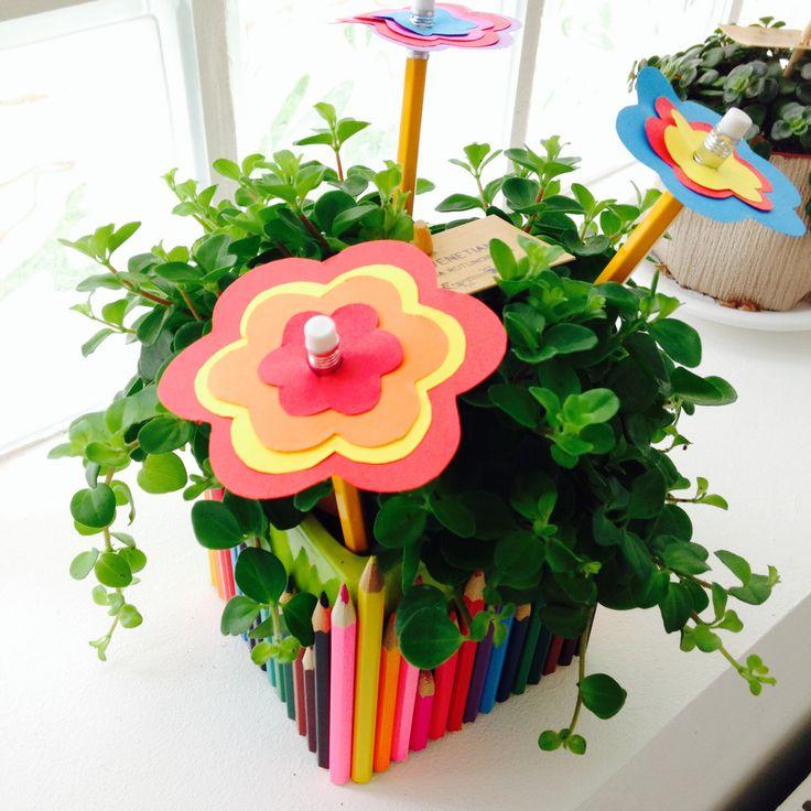 pot-crayon-plante