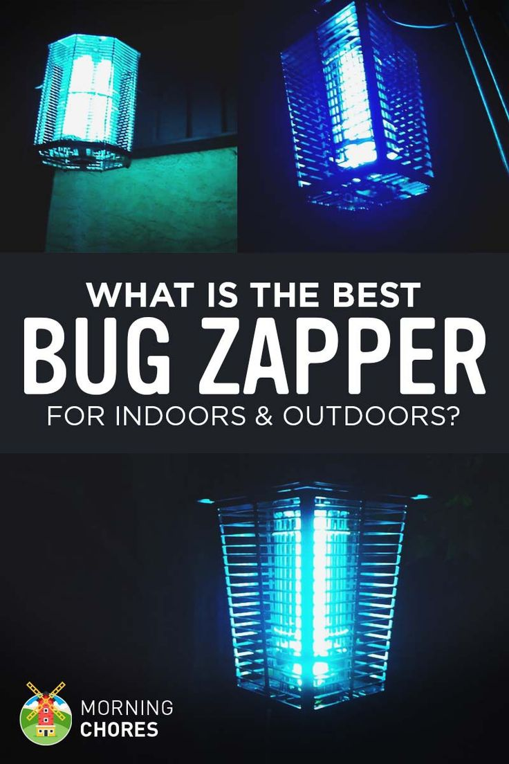7-best-bug-zapper-for-indoors-and-outdoors-review-comparison