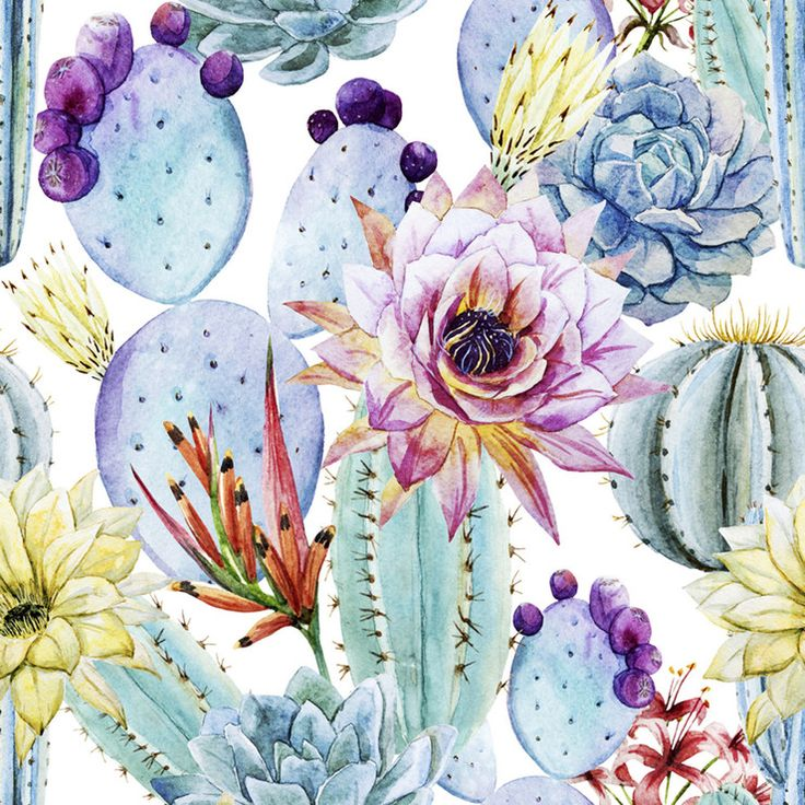 Cactus Removable Wallpaper by WallsNeedLove   Fab.com