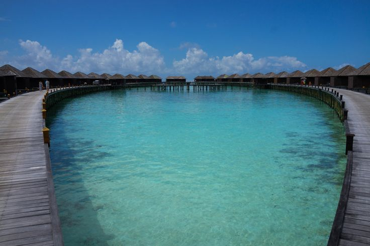 Lily Beach Resort and Spa: MALDIVES: AN AFFORDABLE DREAM DESTINATION