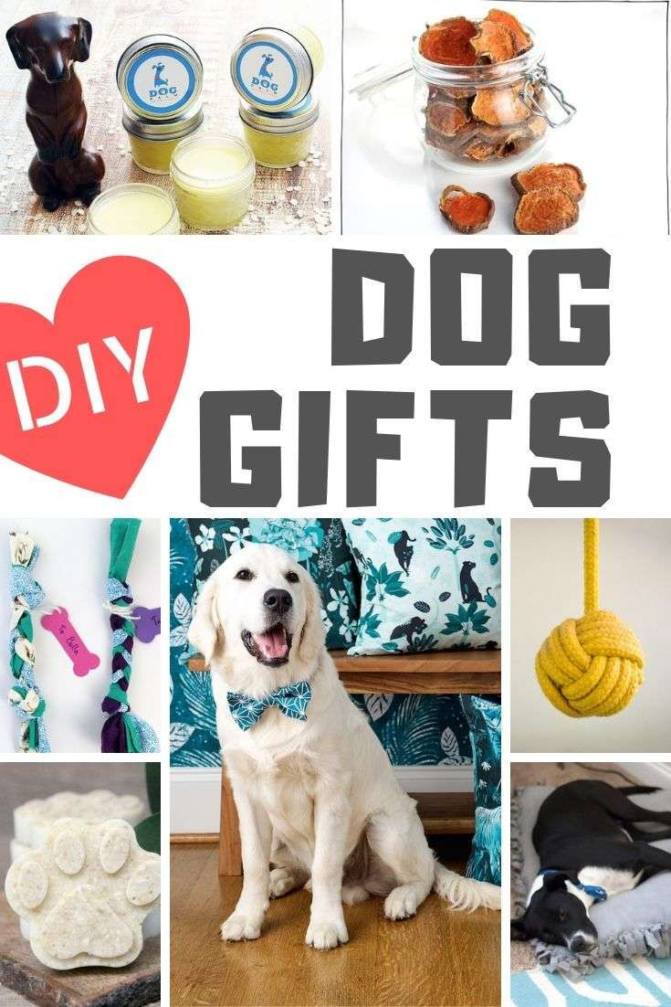 Diy gifts for dogs and dog lovers dog christmas gifts