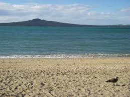 Auckland Beach, NZ