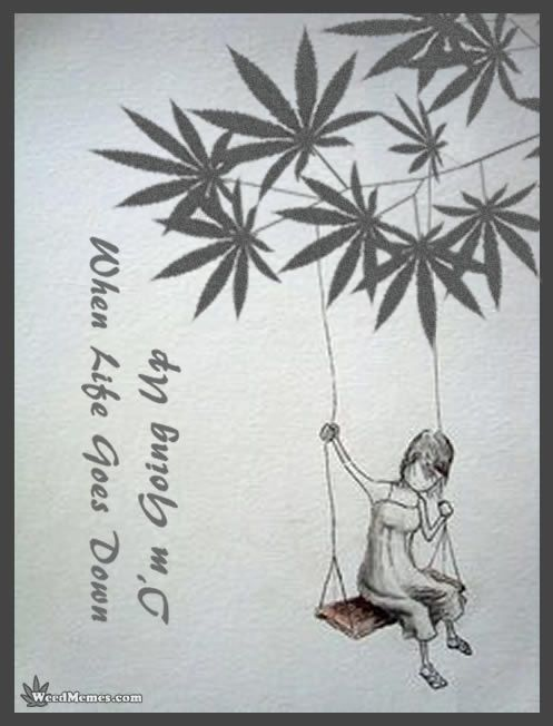 Life & Weed. When Life Goes Down. I'm Going Up. #weedmemes WeedMemes.com