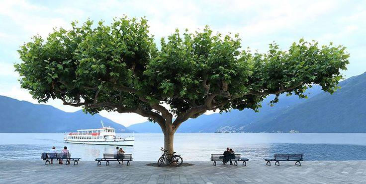 Summer in Ascona