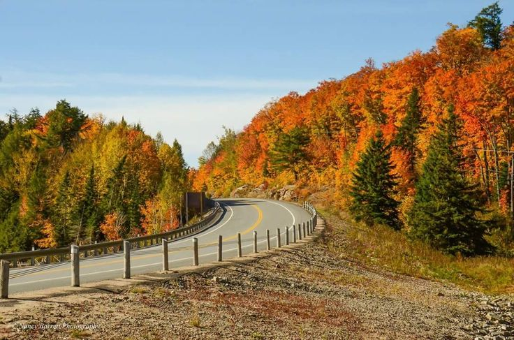 Arowhon Road at Hwy. 60, Algonquin Provincial Park