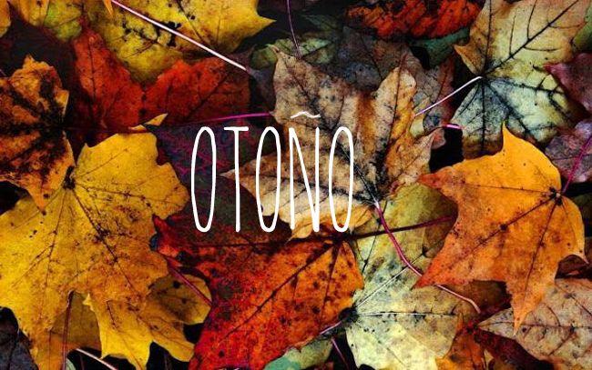Rincones para el otoño | Estilo Escandinavo