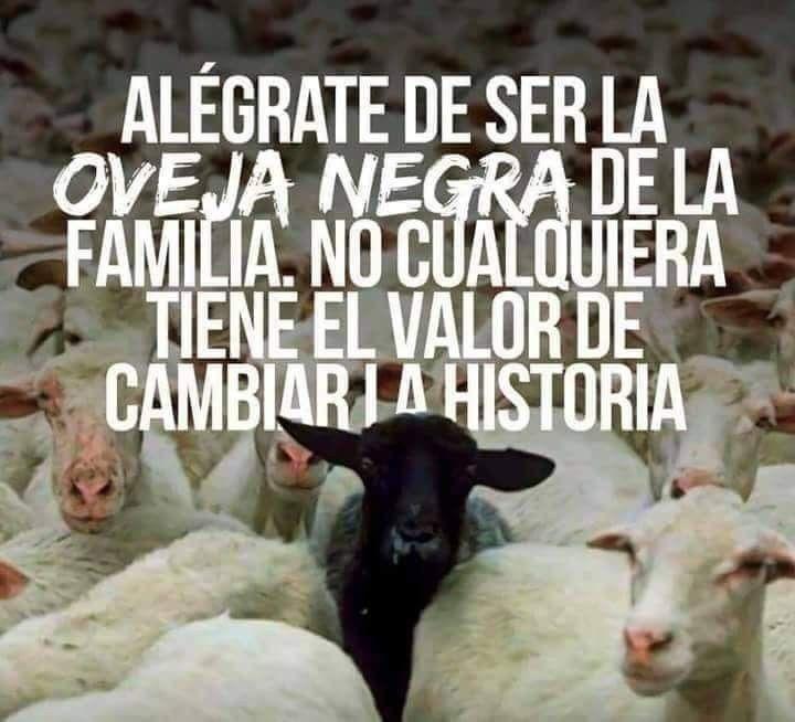 Alégrate De Ser La Oveja Negra De La Familia Oveja