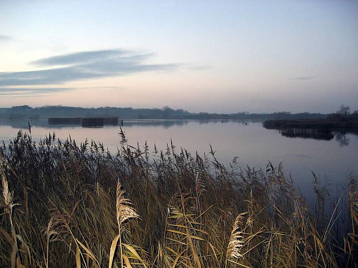 Rockland Broad. Just a few miles from the County city of Norwich and not much further from my house